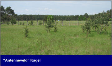 """Antenneveld"" Kagel"